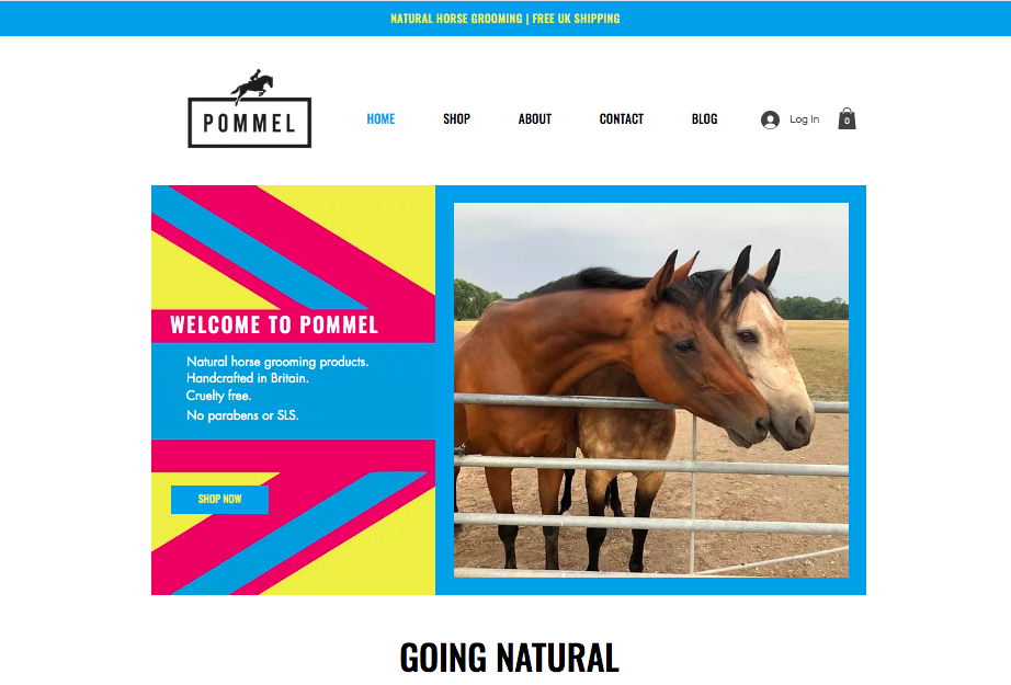 Home page of website for horse grooming products
